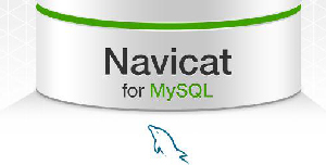 navicat for mysql注(zhu)冊碼大全